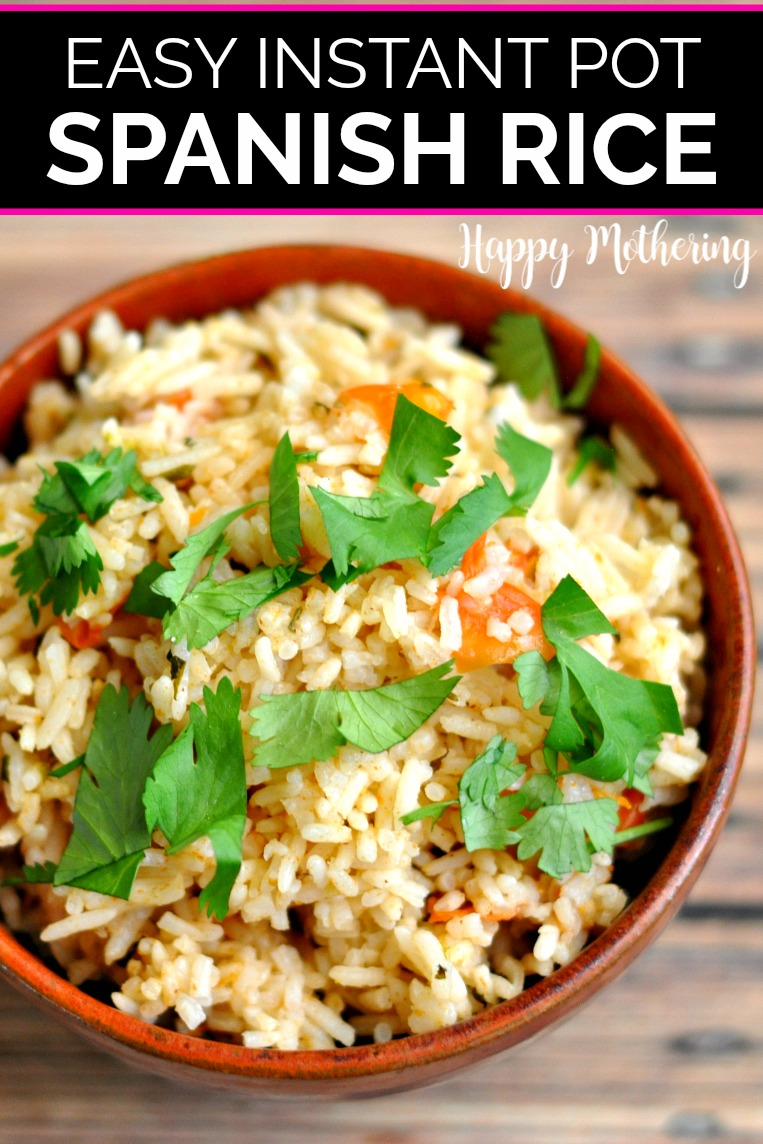 Instant Pot Spanish Rice Recipe in 2020 Mexican side