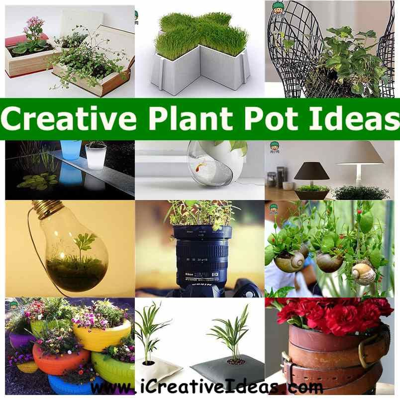 South Central Gardening Landscaping Ideas You Can Use: Creative Plant Pot Ideas