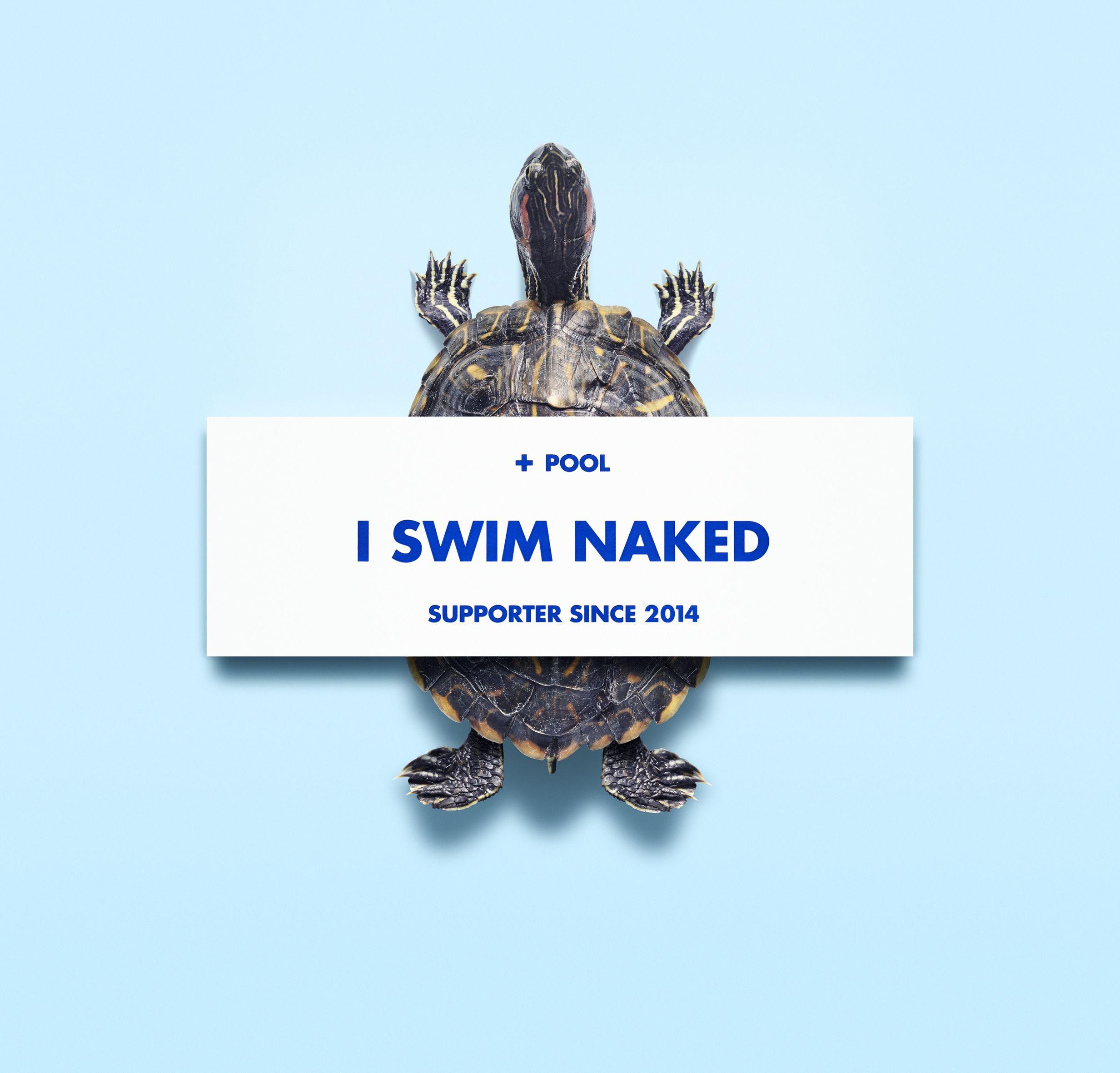 + Pool tile . I swim naked