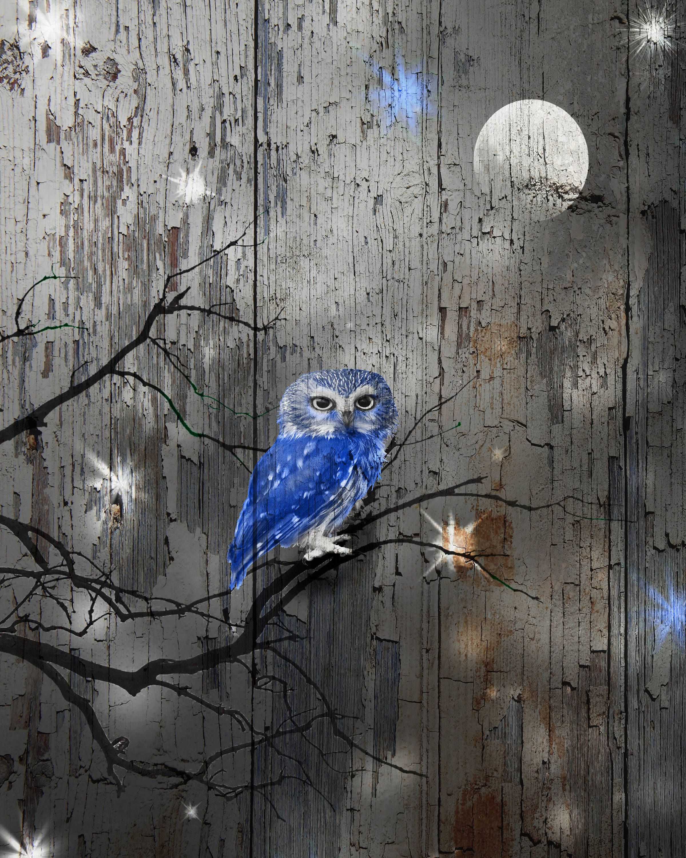 Your place to buy and sell all things handmade Owl decor