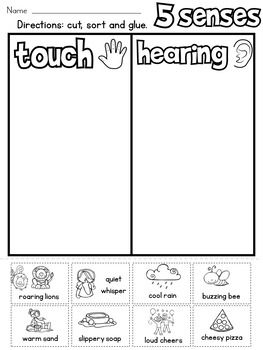 5 Senses Sort Preschool Learning Kindergarten Resources Five Senses Preschool Kindergartenworksheets the five senses worksheets