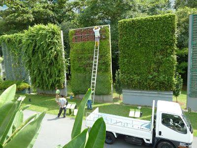 Jardines verticales en construcci n jard n vertical for Muros y fachadas verdes jardines verticales