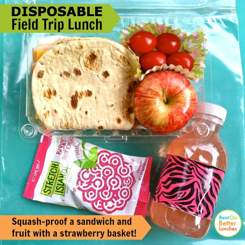 A Disposable Or Recyclable Bento School Field Trip Lunch Linky Party