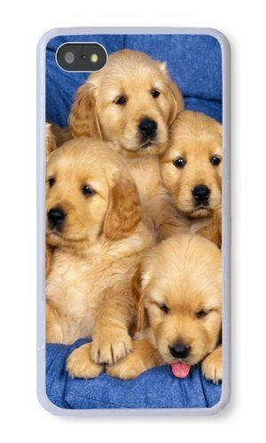 Iphone 5s Case Color Works Golden Retriever Dog Phone Case Custom