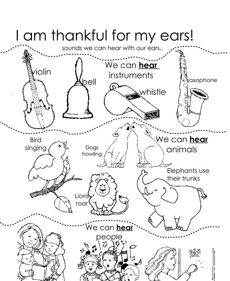 Ear Coloring Page I Am Thankful For My Ears