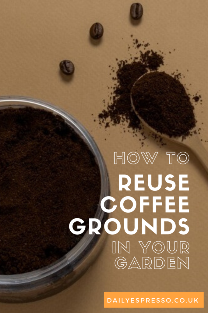 How To Reuse Coffee Grounds In Your Garden Daily
