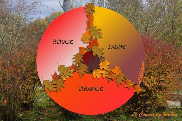 Image issue du site Web http://idata.over-blog.com/2/18/77/65/Fantaisies-9/Coucou-du-haiku--Rouge-jaune-orange.jpg
