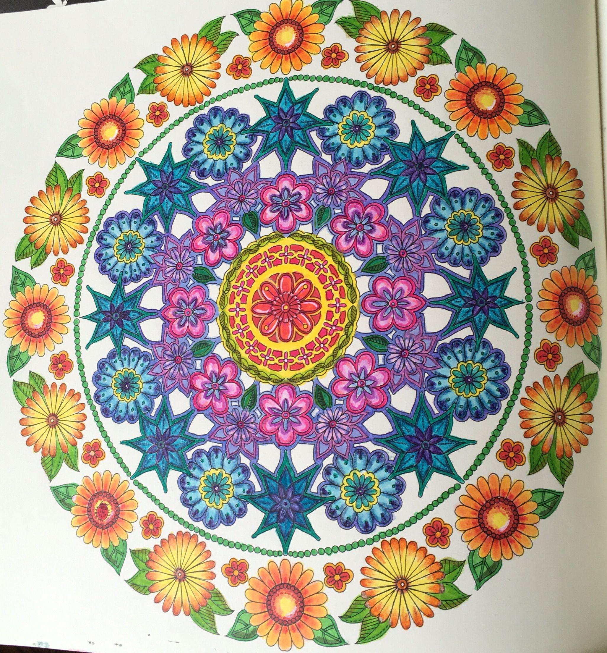 The secret garden coloring book finished - Explore Secret Garden Coloring Book And More