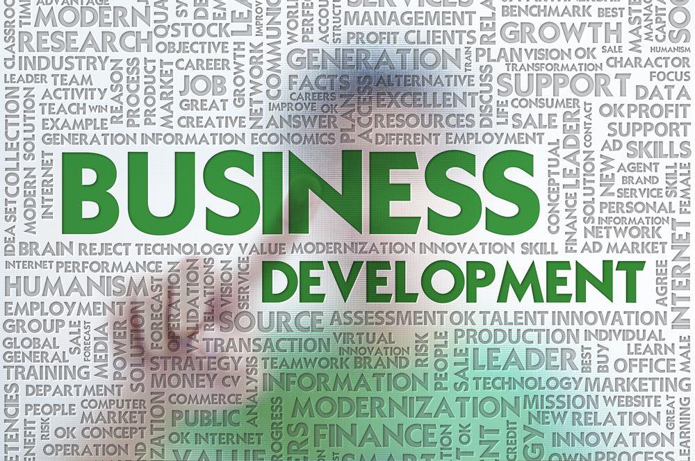 Desarrollo De Negocio Una Estrategia Imparable  Puntos Clave