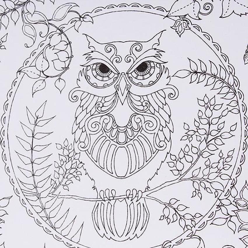 Jual lalang secret garden magic forest coloring book black