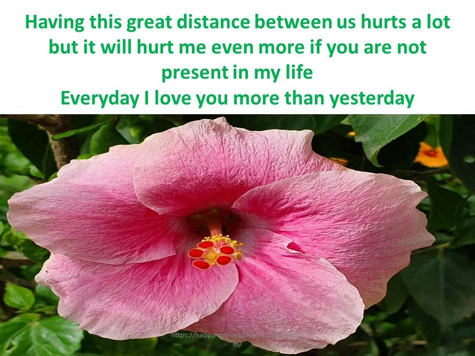 Ldr Quotes For Her Him Happy Mother S Day Greetings Happy Mothers Day Distance Relationship Quotes