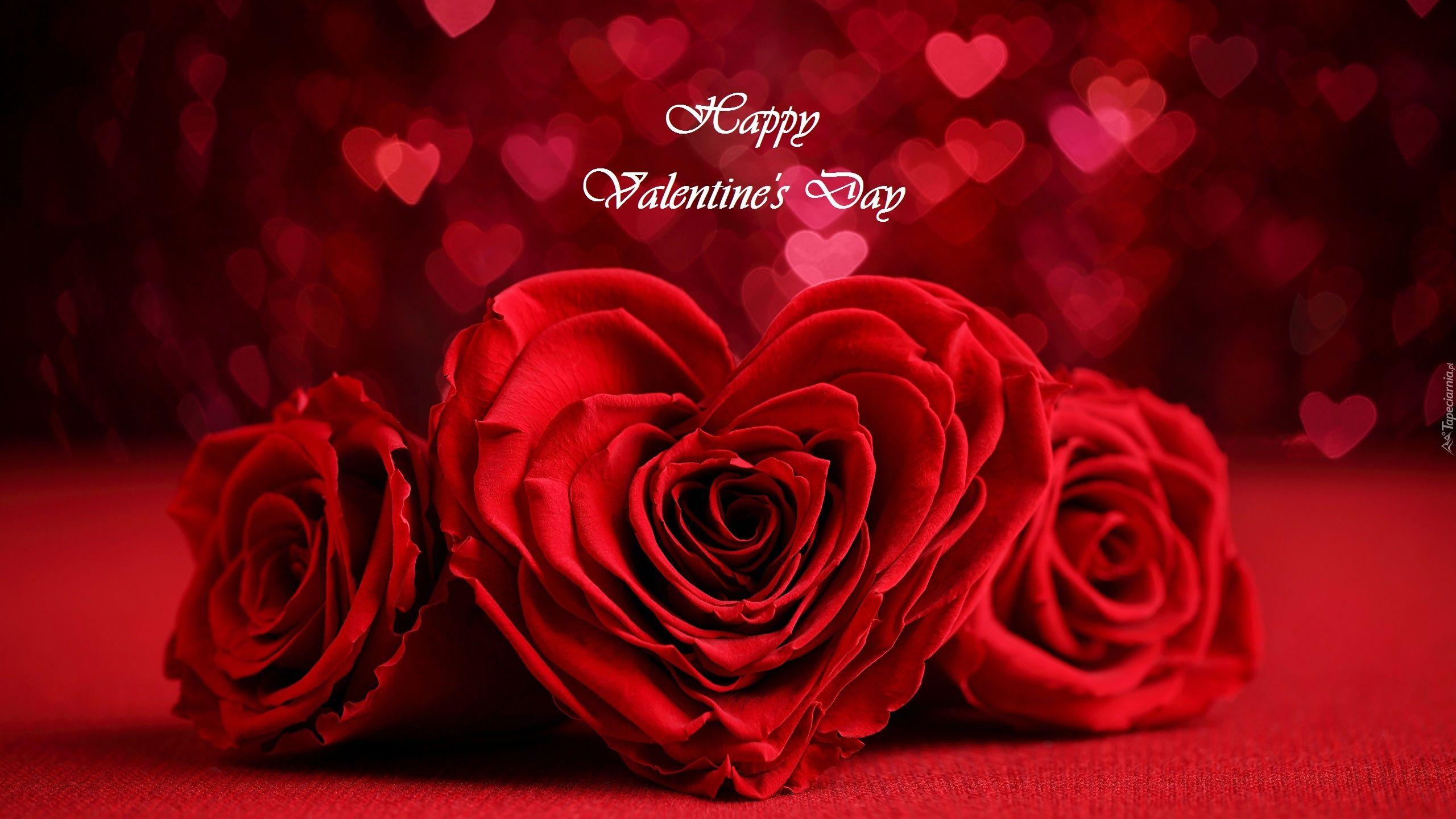 Walentynki Czerwone Roze Serce Napis Rose Day Wishes Instagram Posts