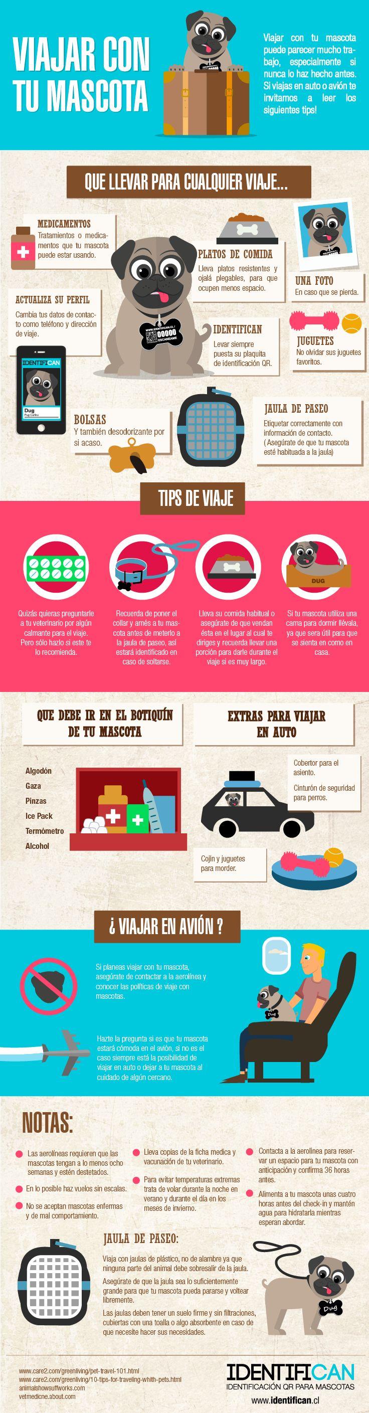 Consejos para viajar con tu mascota - Tips for traveling with your pet