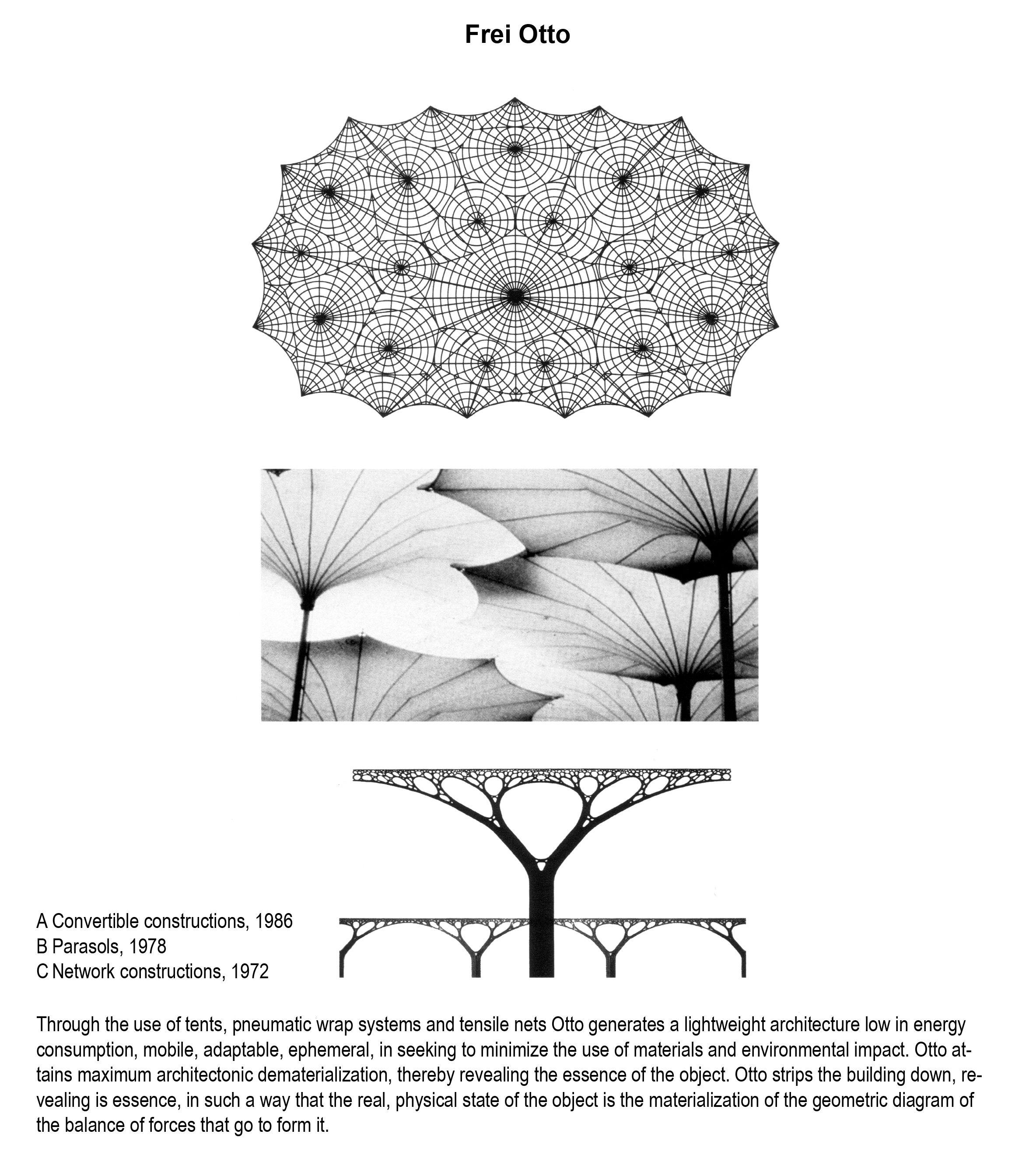 20th Century Precedents Frei Otto Structure Architecture Study Architecture Membrane Structure