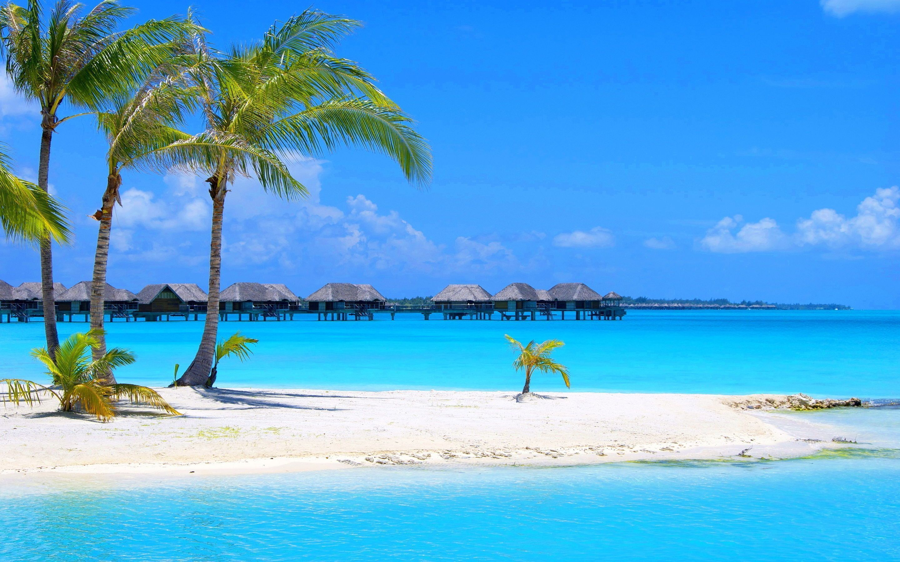 Most Beautiful Beach Hd Wallpaper Download Beach Images Free Pc Beach Wallpaper Beautiful Beaches Beautiful Beach Pictures