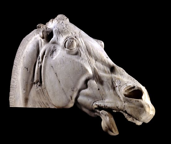 The head of a horse, carved in stone on the Parthenon temple in Athens. It was made in the 400s BC.