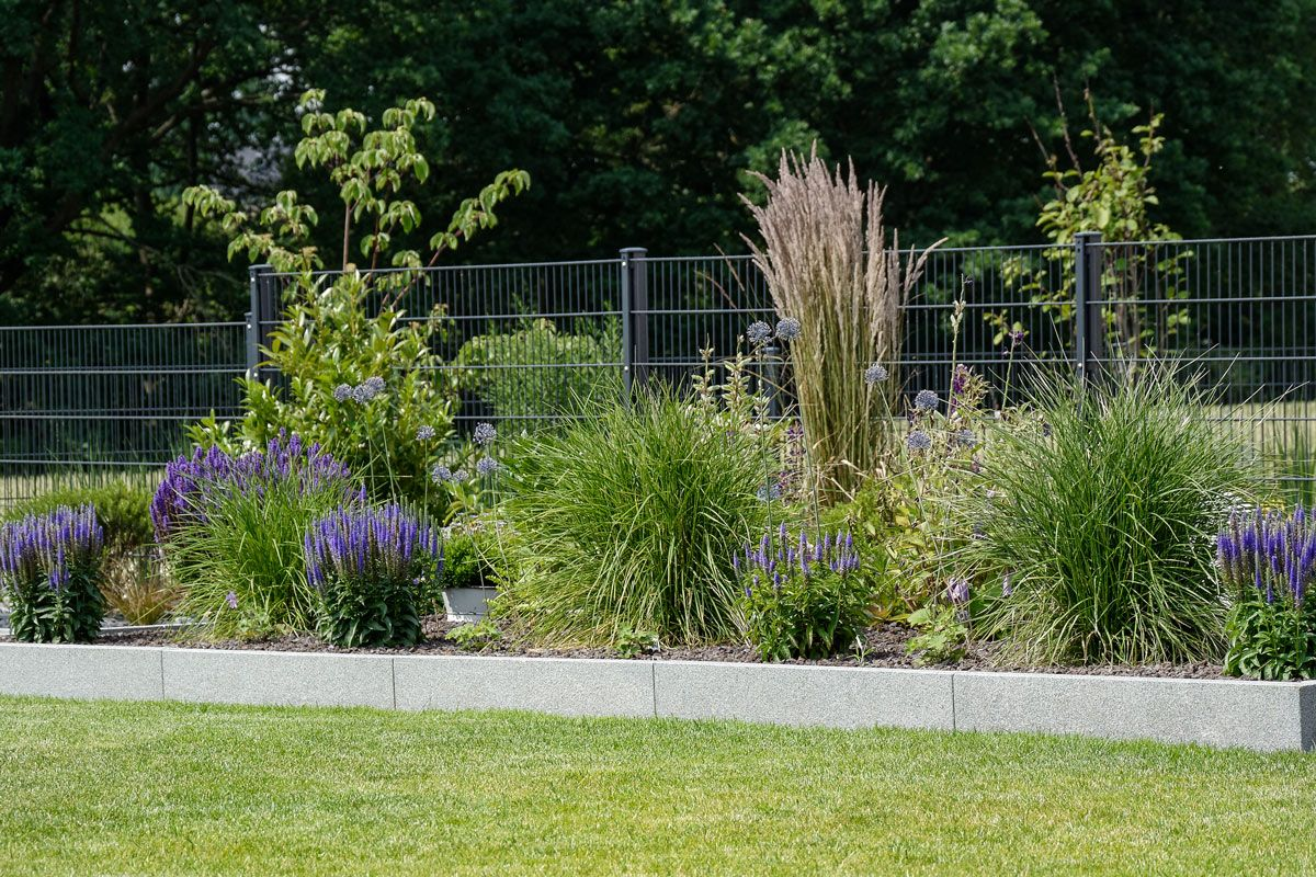Garten blaues beet gr ser beetgestaltung outdoor for Gartengestaltung lavendel