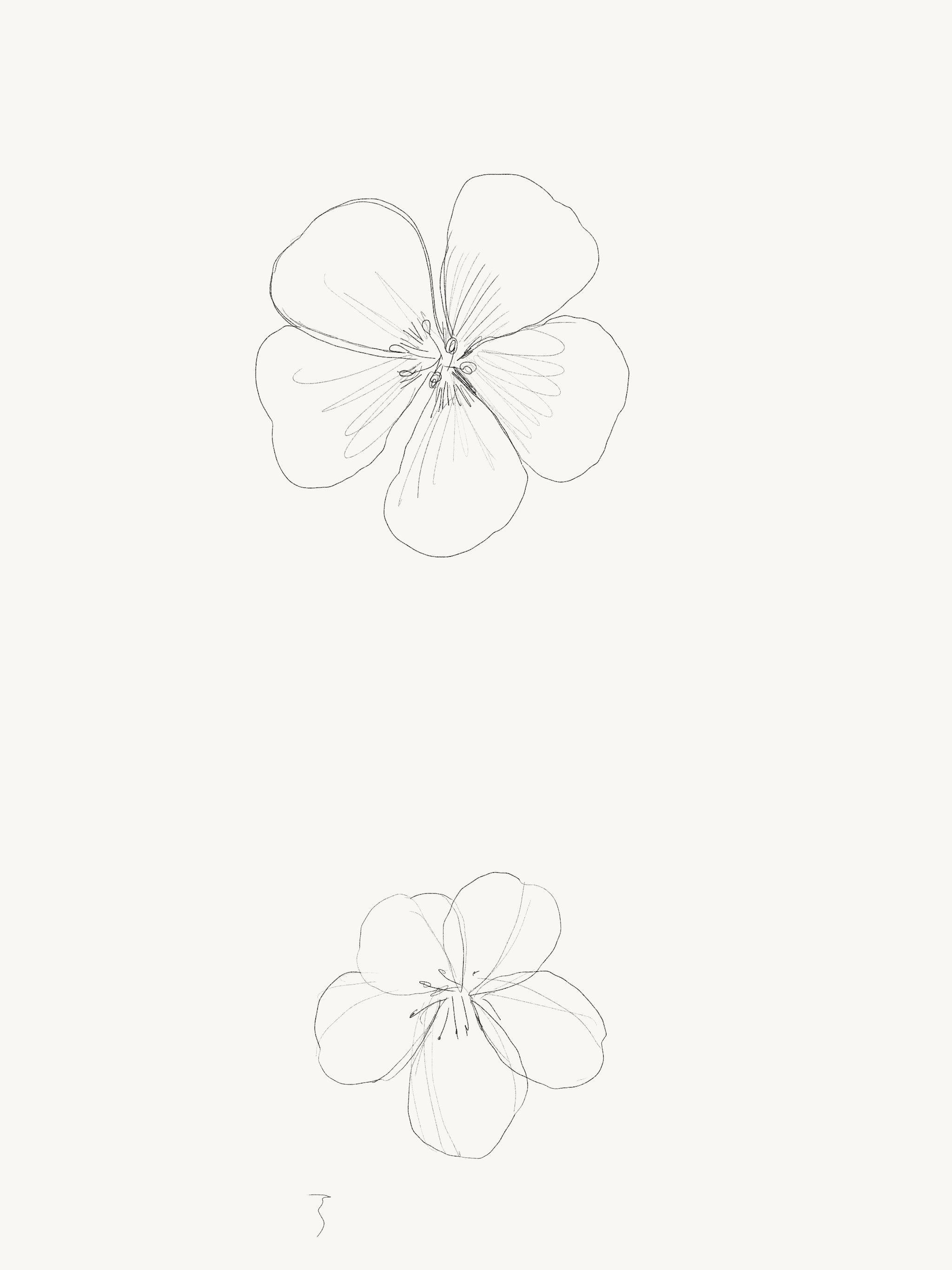 Adobe Photoshop Sketch로 제작 다운로드: http://apple.co/1cze7qs