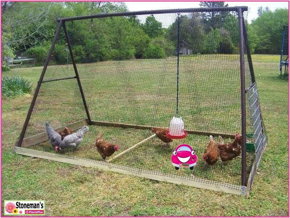 Got an old swing frame? Why not upcycle it into a portable chicken ...