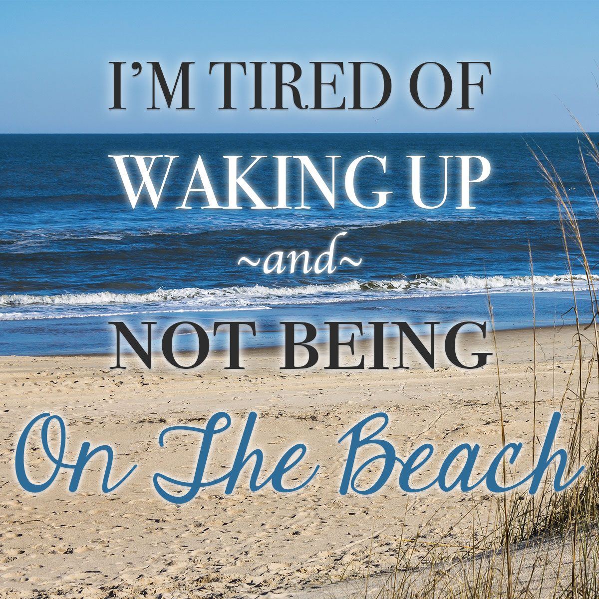 It's time to wake up on the sunny side...at the beach ...