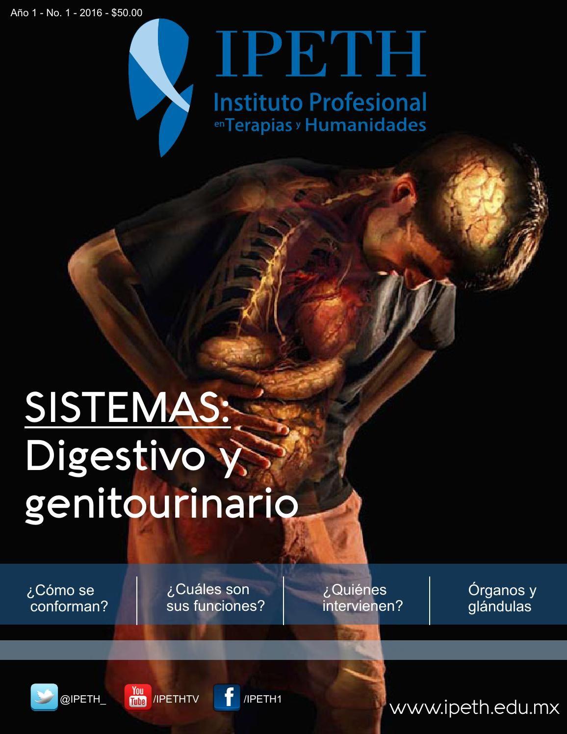 Revista anatomía IPETH | Anatomía, Fisiología y El cuerpo humano