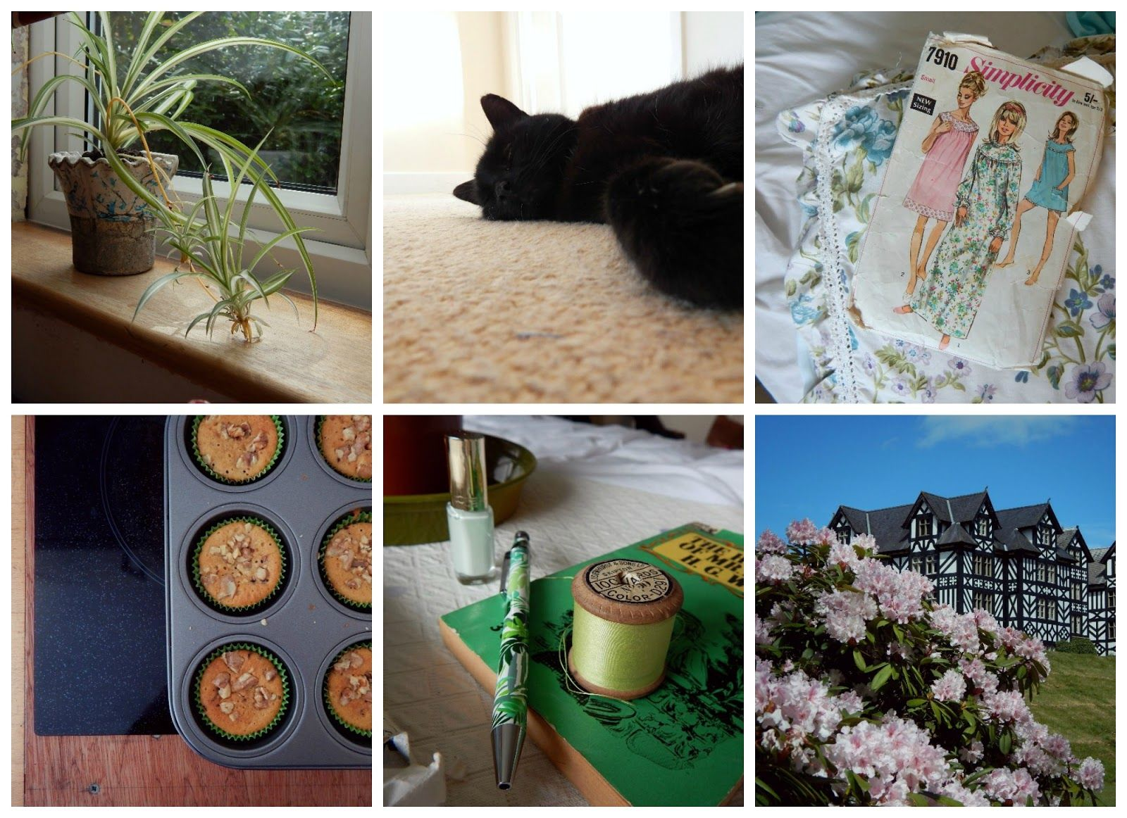 The Weekend Whim: April 2015
