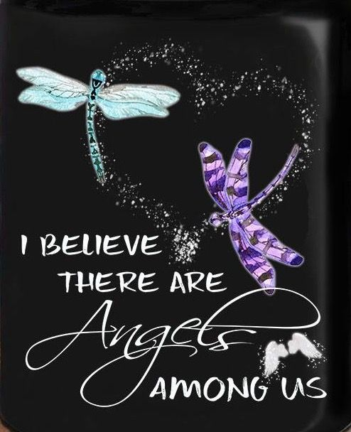 Dragonfly Quotes, Quotes