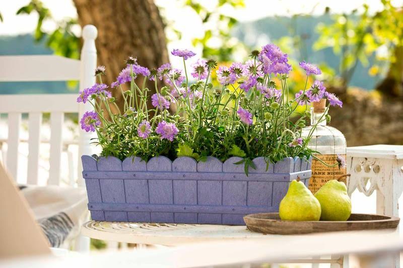 Giardino Su Terrazzo. Interesting Giardino In Stile Shabby Chic With ...
