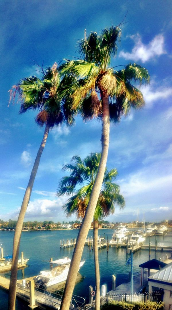 Fort Lauderdale - the Venice of America #FortLauderdale #ThingsToDoInFortLauderdale #FortLauderdaleAttractions