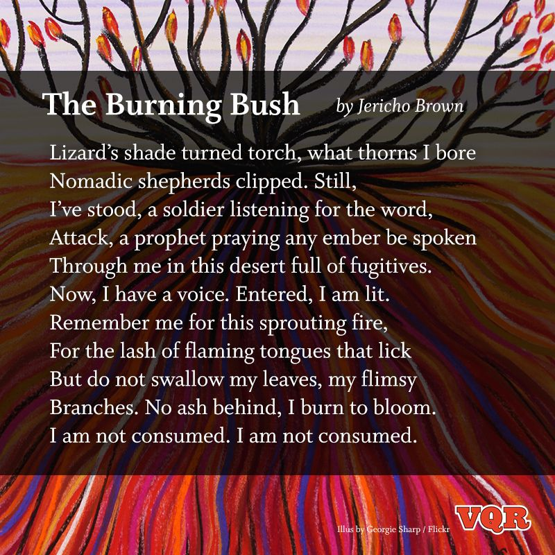 """""""The Burning Bush"""" by Jericho Brown #poem #poetry"""