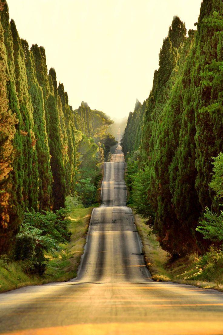 Tuscany, Italy photo via cajun #landscapephoto