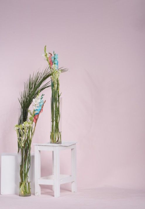 Photo Shoot Pink Color Background Image With Flowers Photography Fashion Brand Clothing Brand Product Photography