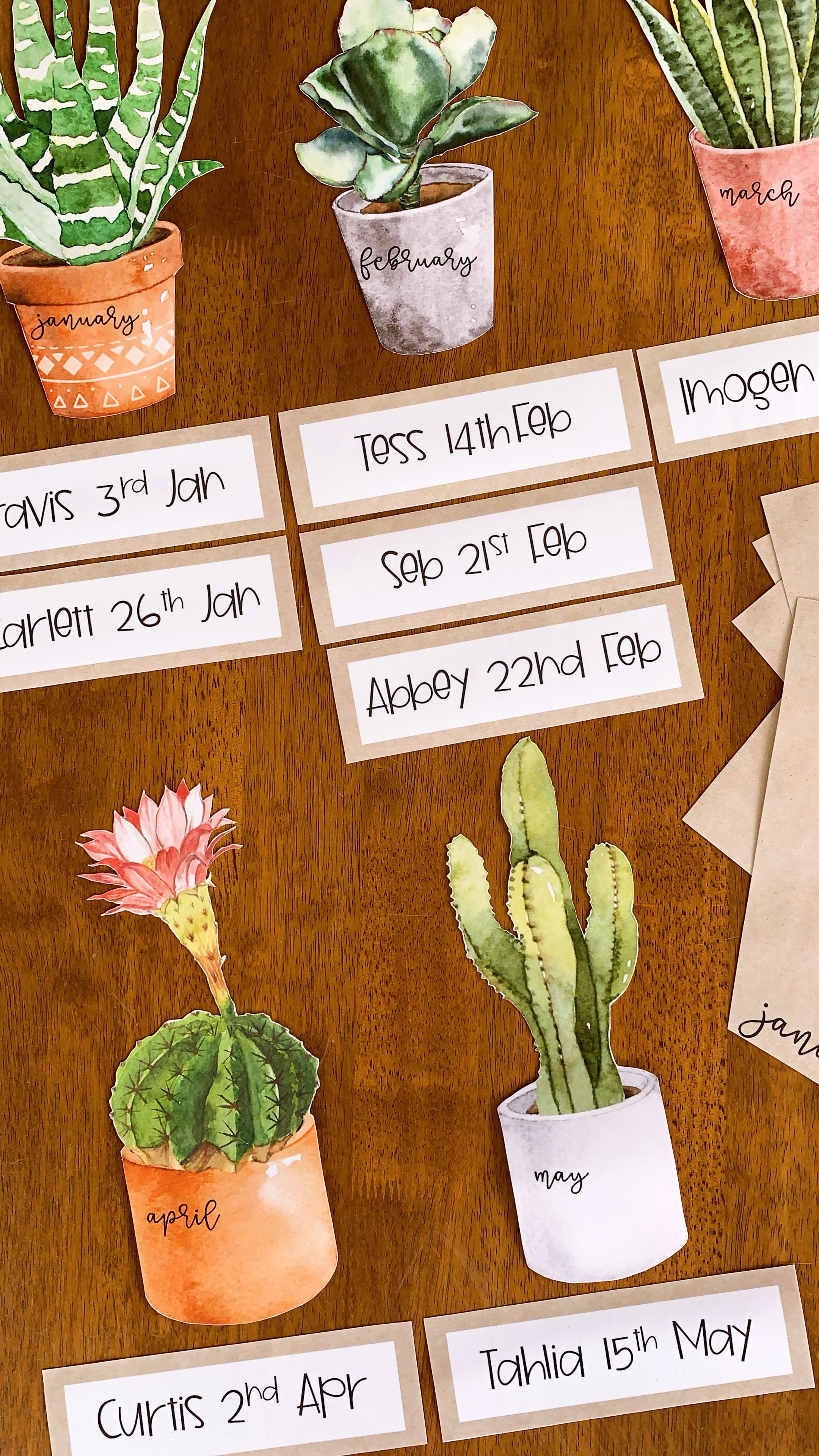 Cactus Editable Birthday Display – you clever monkey #classroomdecor