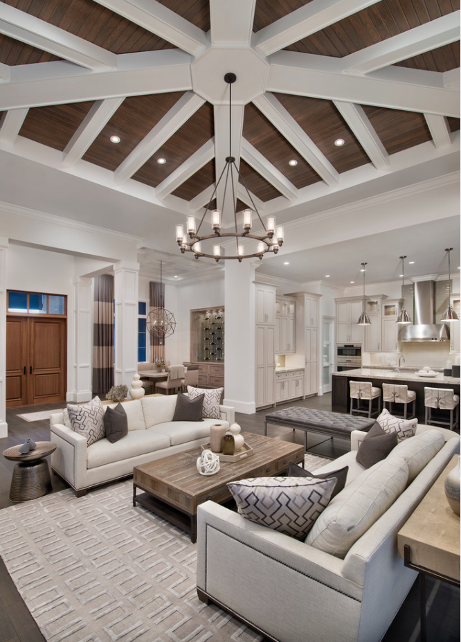 Neutral Living Room Houzz Transitional Living Room Design Transitional Living Rooms Modern Houses Interior