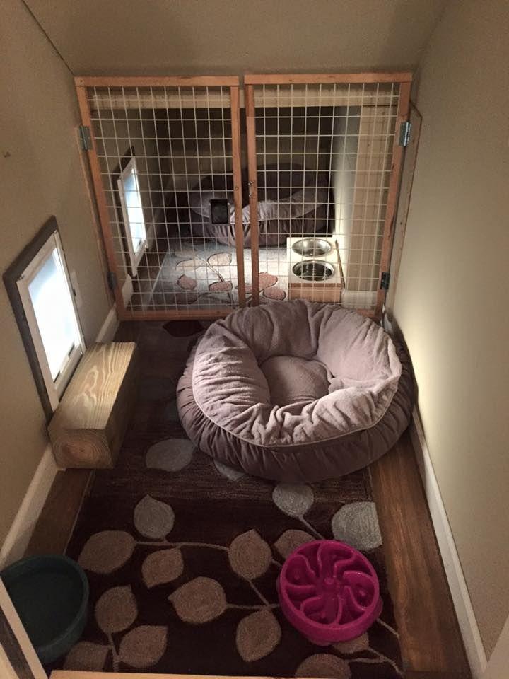 Indoor/outdoor dog kennel | Pets | Pinterest