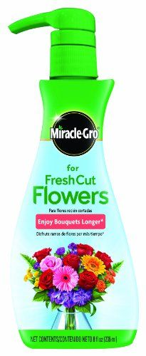 Miracle-Gro Rose and Fresh Cut Flower Food, 8-Ounce Miracle-Gro http://www.amazon.com/dp/B00GRAGBBE/ref=cm_sw_r_pi_dp_spTWtb1XYVT9XJQH