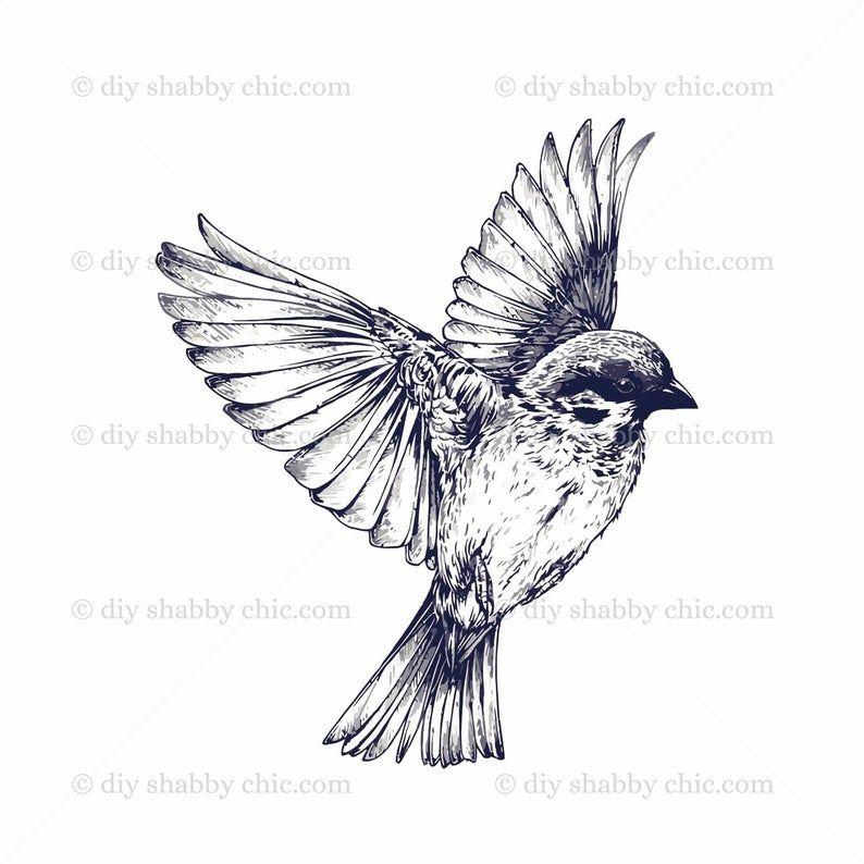 Furniture Slide Decal Vintage Image Transfer Bird Fly Chic Antique DIY Making