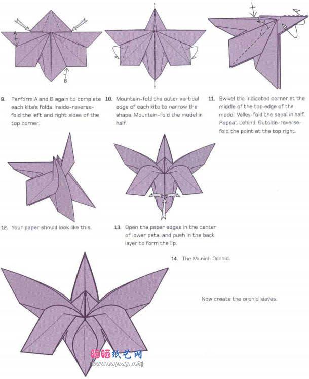 origamiimageswithinstructions origami orchid diagram