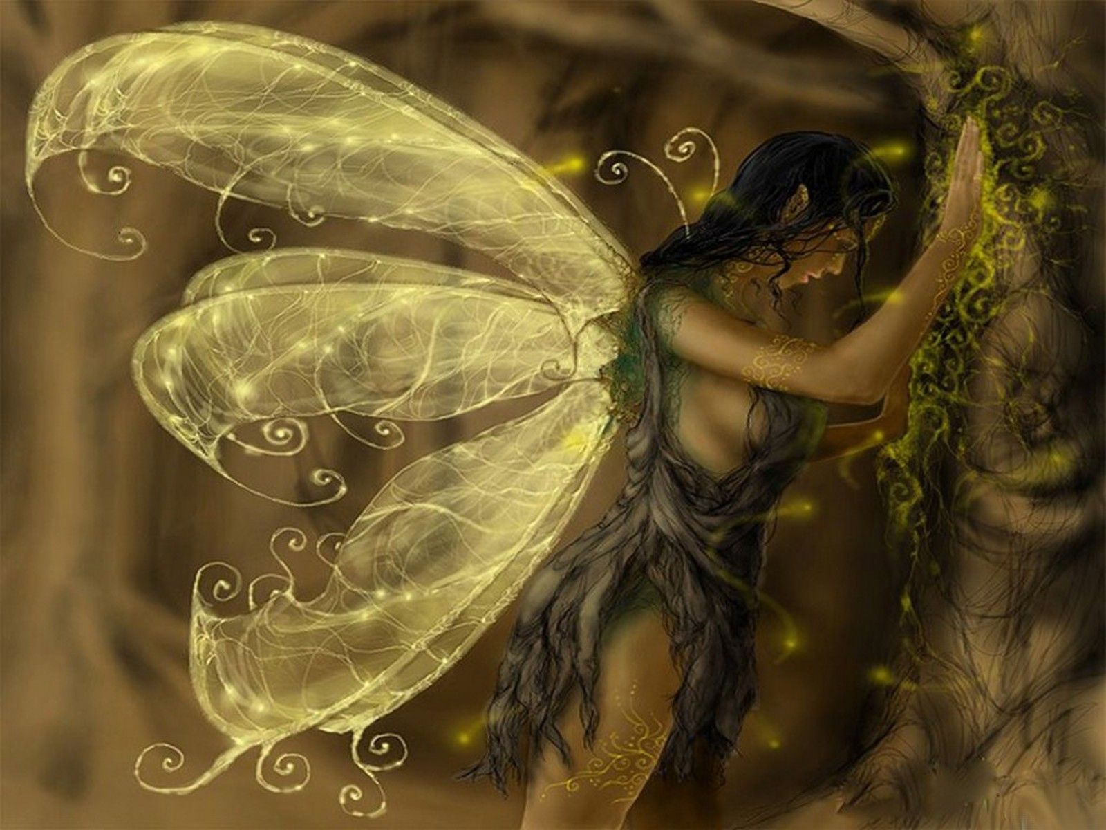 Fantasy Fairy Tinker Bell Shannon Rodriguez Wallpaper