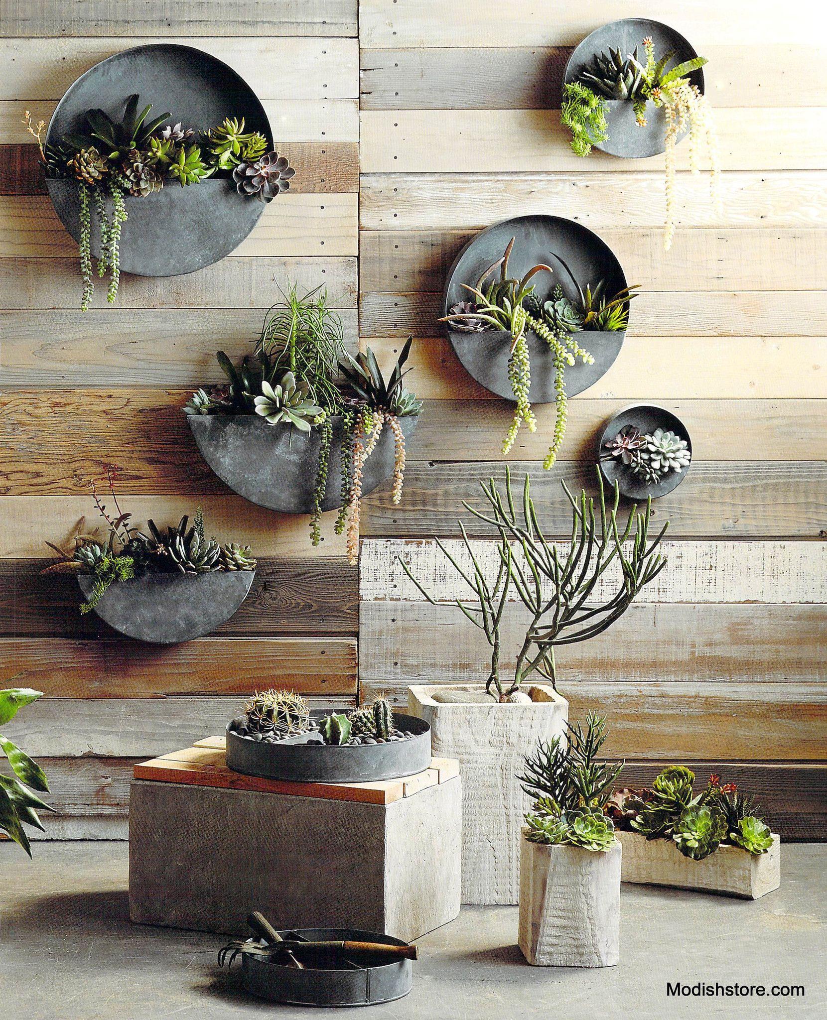 Orbea Zinc Circle Half Circle Wall Planters Lighting And Wood