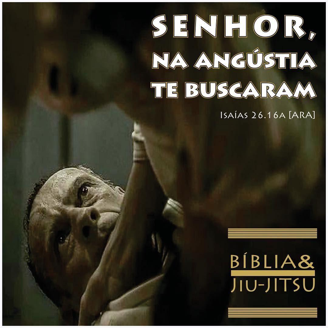 211 Curtidas 5 Comentarios Biblia Jiu Jitsu Bibliaejiujitsu