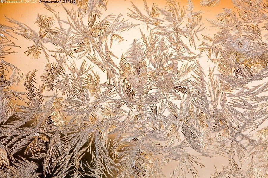 Kuurankukkia - jääkide jääkiteet jääkukka jääkukat lasissa ikkunalasissa kide kiteet huurre huurteessa jäätynyt vesi jää jäässä jäinen lasi jääkuvio jäätyminen muoto muodot ikkunanlasi ikkunalasi kuura kuurankukka kuurankukat luonto talvi kova pakkanen ikkunaruutu kylmyys kylmä kuvio jääkuvio muoto kalpea oranssi keltainen tammikuu