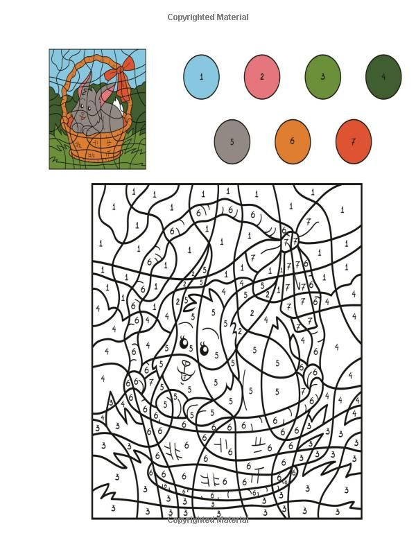 amazoncom color by numbers adult coloring book 9781517725297 spudtc - Color By Number Books