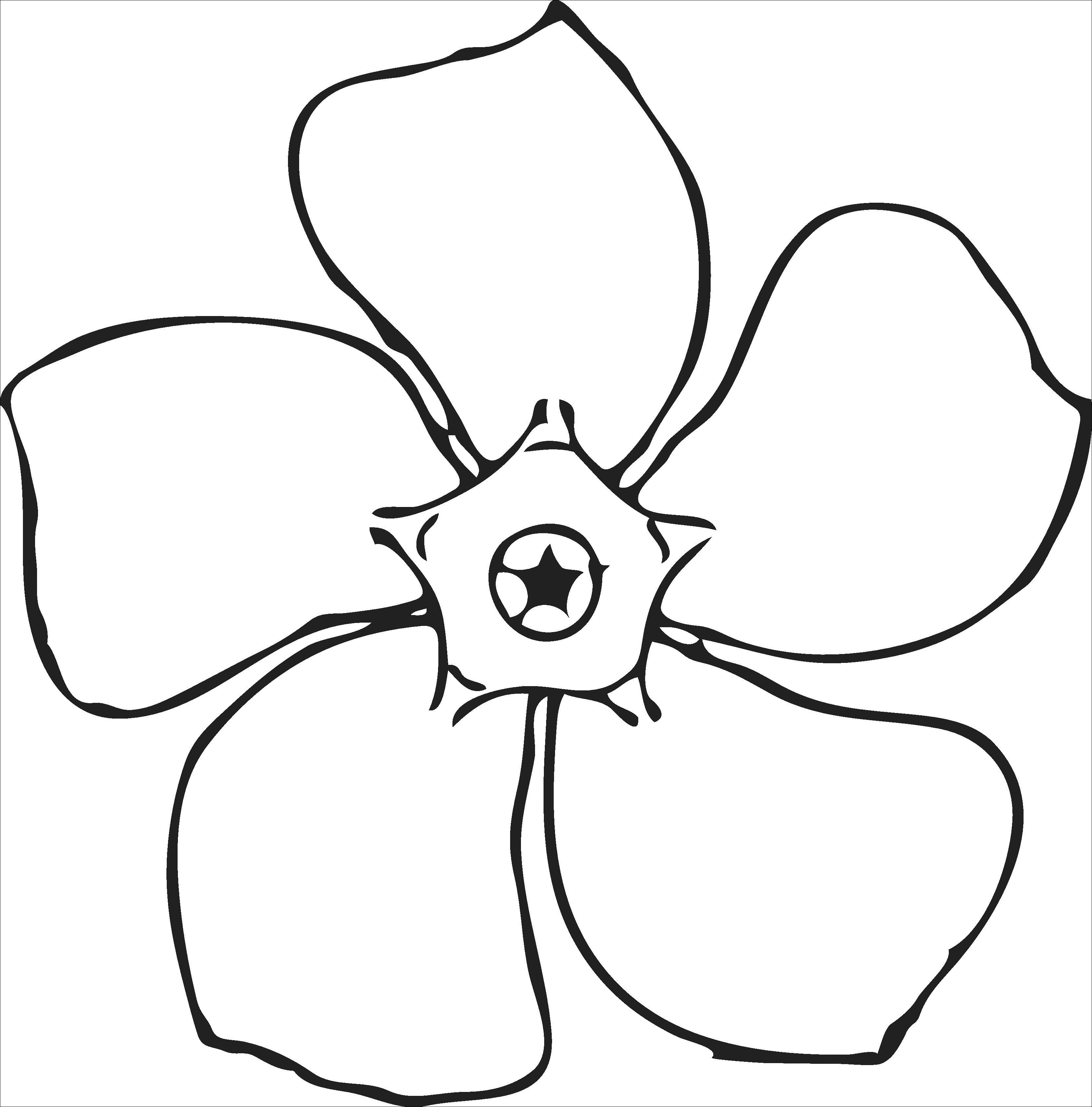 Gambar Sketsa Bunga Mawar Hitam Putih Sketsa, Seni