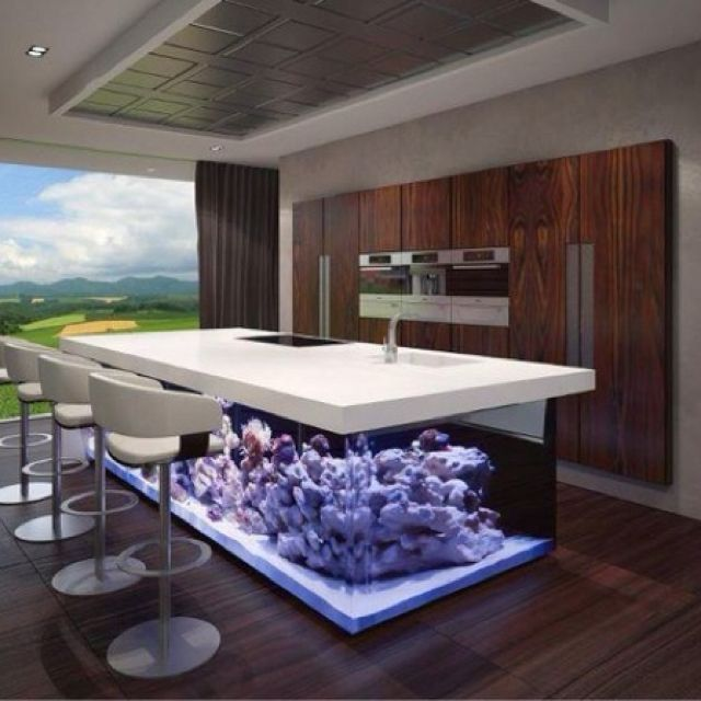 Kitchen Island Fish Tank 25 rooms with stunning aquariums | fish tanks, fish and kitchens