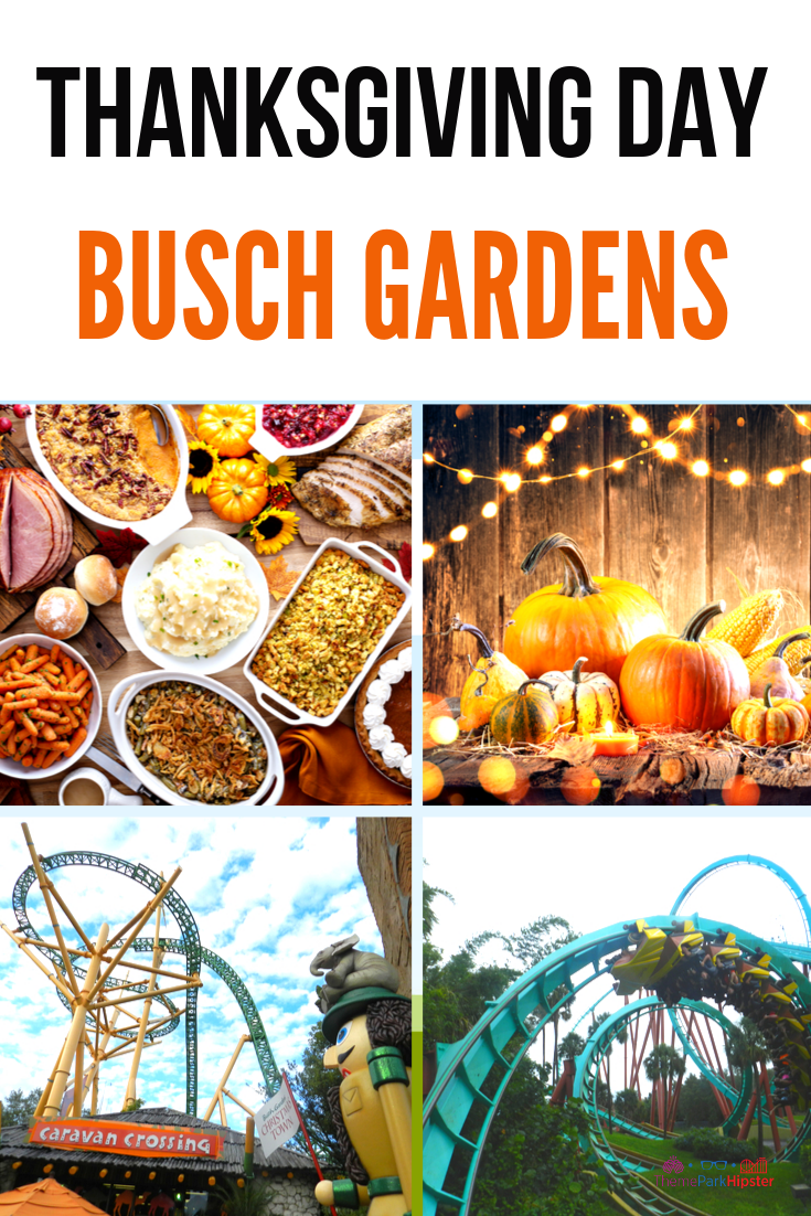 All Day Dining At Busch Gardens Tampa