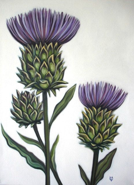 Original Oil By Carin Vaughn Of Thistle Flowers 18x24 Etsy Thistles Art Thistle Flower Thistle Tattoo