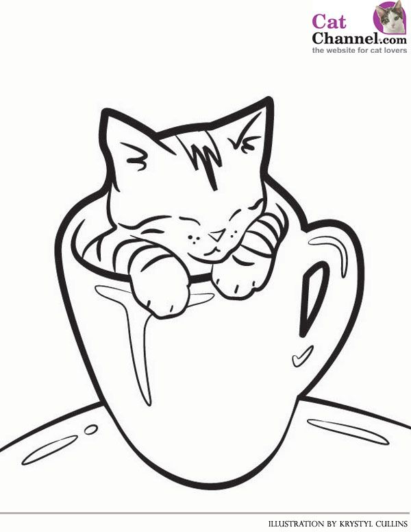 - Kitteninacup-600px.jpg (600×776) Cat Coloring Book, Kittens Coloring,  Kitten Drawing
