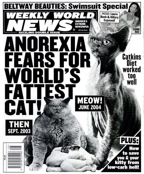 Literary News From All Corners Of The World: Esteemed Literary Journal Weekly World News