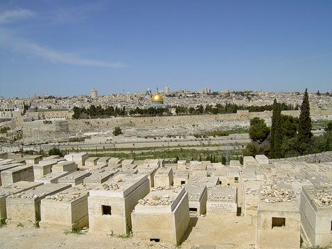 Where Is Mount of Olives | Islam demands control over Mount of Olives in Jerusalem | News that ...